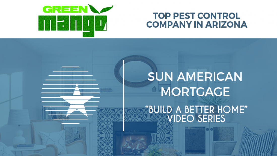 build a better home - green mango pest control - feature